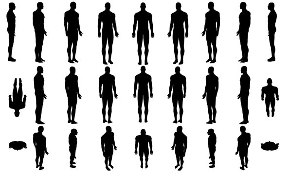 Set with silhouettes of a body of a man in different positions isolated on a white background. Vector illustration