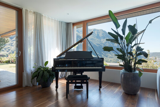 Black piano, patio with garden. Large window overlooking the valley with lake view