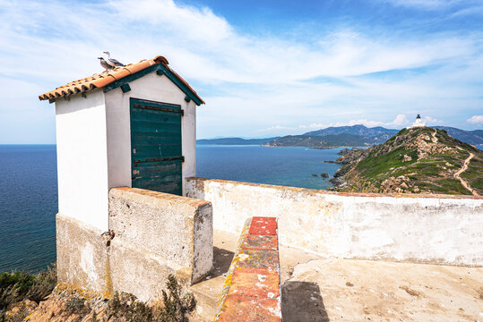 Old stone shed with a seagull family seating on the top with a lighthouse and the Mediterranean sea on the background at Sanguinaires island near Ajaccio. France 2021
