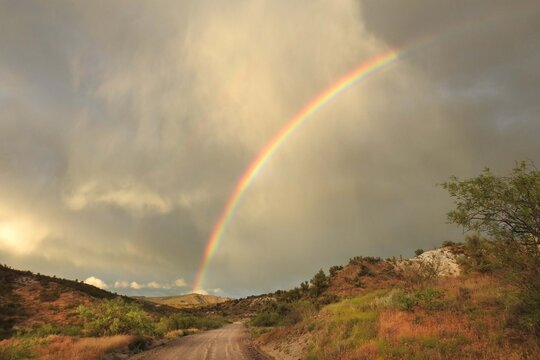 A beautiful rainbow over the desert landscape, scenic forest road 618, in the Coconino National Forest, Yavapai County, Arizona.