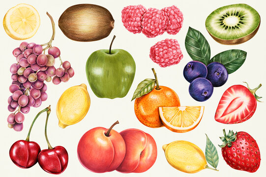 Illustration of isolated assortment of fruits watercolor style