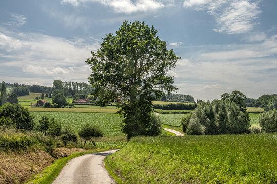 Campagne Monts des Flandres