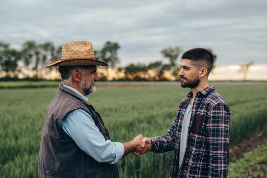 farmers handshake outdoor on wheat field