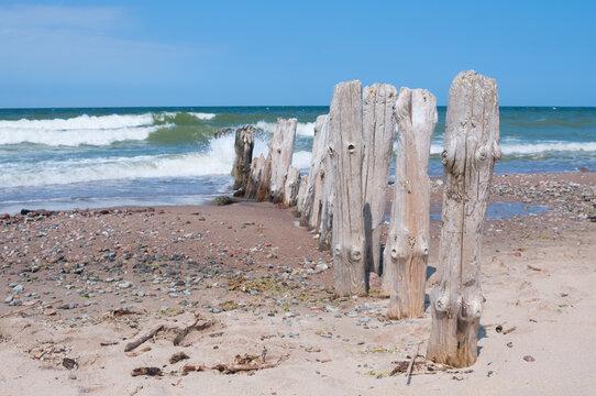 Old wooden breakwater on a sea coast