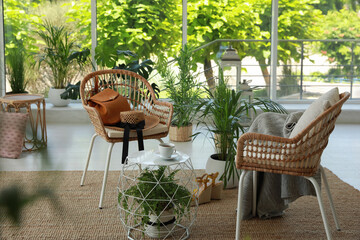 Fototapeta Indoor terrace interior with elegant furniture and houseplants obraz