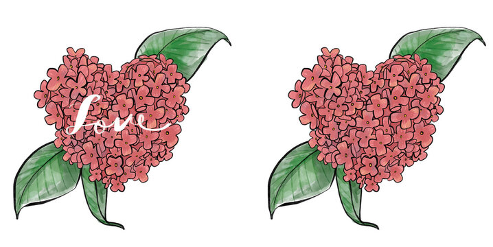 Heart shape hydrangea watercolor hand painted png art rose red cute romantic meticulous background card picture frame stationery clothing printing