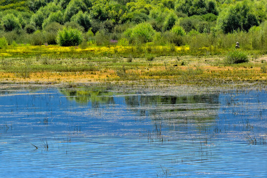Reflections in the water of the Sierra de Guadarrama, in the La Pinilla Reservoir, located in the Lozoya Valley, in the Community of Madrid