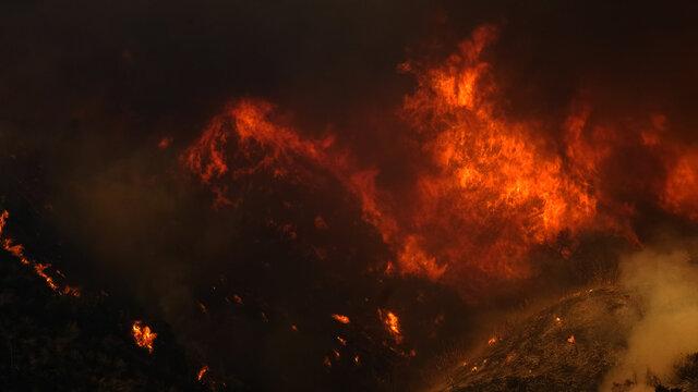 Saddleranch Fire Blaze California Wildfire Los Angeles