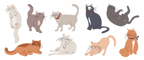 Obraz Cute and funny cats doodle vector set. Cartoon cat or kitten characters design collection with flat color in different poses. Set of purebred pet animals isolated on white background. - fototapety do salonu
