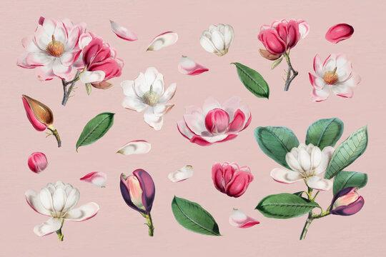 Elegant floral design collection vector