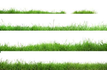 Fototapeta Beautiful lush green grass on white background, collage obraz