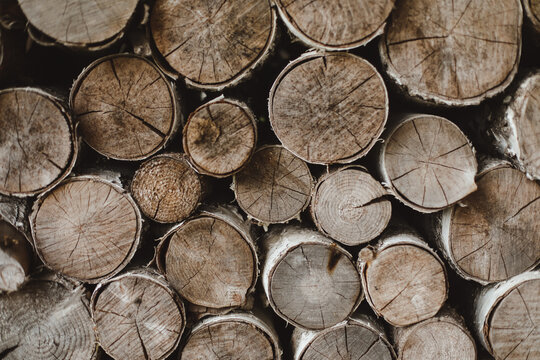 texture of wooden logs of different sizes lying in a heap