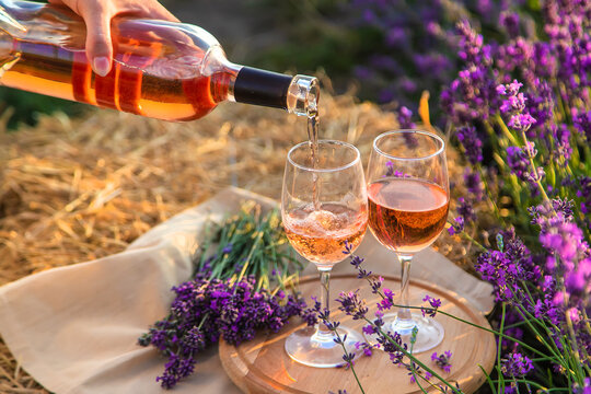 A woman holds wine in glasses. Picnic in the lavender field. Selective focus.