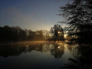 Obraz Promienie wschodzącego słońca na stawie podczas listopadowego świtu w Parku Śląskim w Chorzowie. - fototapety do salonu
