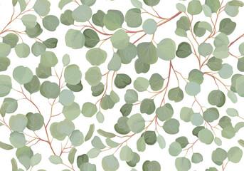Fototapeta Eucalyptus floral watercolor seamless pattern. Vector illustration tropical greenery branches background obraz