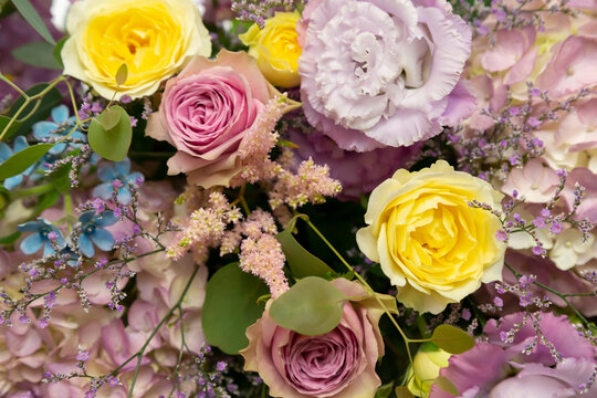 Colorful roses in Takasago for wedding ceremony