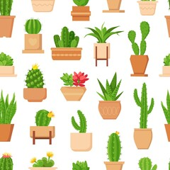 Fototapeta Cactus seamless pattern. Tropical plant, succulent and cute cacti with flower in pot. Trendy floral home plants decor vector wallpaper print obraz