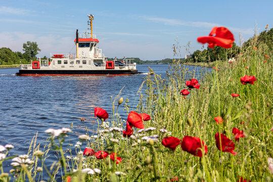 SCHACHT-AUDORF, GERMANY - JUNE 14, 2021: Kiel Canal ferry MEMEL at crossing point Schacht-Audorf - Nobiskrug