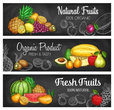 Tropical fruit and berry chalkboard banners with vector sketches of fresh farm food. Garden apple, pear and peach, exotic mango, orange, pineapple and grapes, watermelon, kiwi and lemon chalk sketches