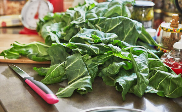 Cooking Swiss chard according to the recipe from the Internet Swiss chard pie