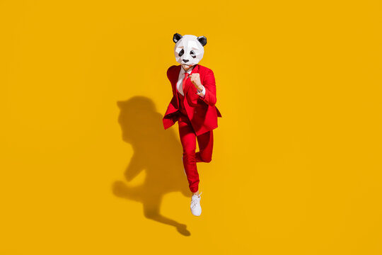 Photo of incognito panda guy jump run fast wear mask red tuxedo footwear isolated on yellow color background