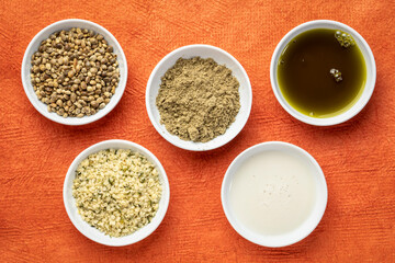 Fototapeta collection of hemp seed products: hearts, protein powder, milk and oil in small white bowls against textured orange paper, superfood concept obraz