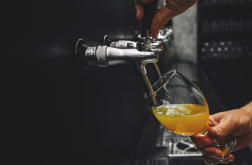 Fototapeta bartender hand at beer tap pouring a draught beer in glass serving in a restaurant or pub obraz