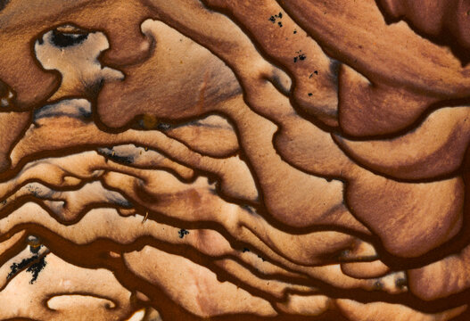 Detail of Deschutes Picture Jasper patterns