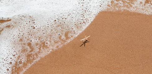 Fototapeta Beautiful white starfish standing on sand and waiting for the waves at the seashore. Summer vacation and relaxation concept. Marine banner with copy space. obraz