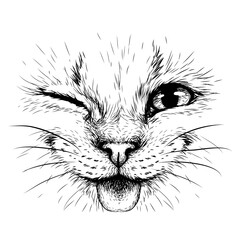 Obraz Funny Cat. Creative design. Graphic portrait of a smiles cat in close-up on a white background. Digital vector graphics. - fototapety do salonu