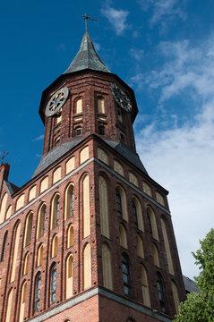 Cathedral of Konigsberg on the Kneiphof island against blue sky, Kaliningrad, Russia