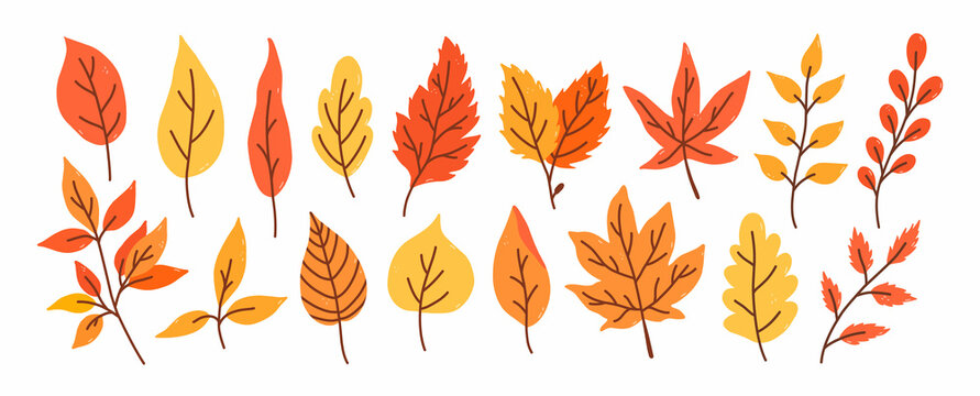 Set of different autumn leaves and twigs isolated on a white background. Vector hand-drawn illustration in cartoon flat style. Perfect for your project, cards, invitations, print, decorations.