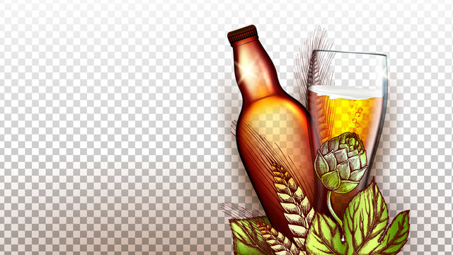 Beer Drink Product Glass And Blank Bottle Vector. Wheat And Malt Plant Natural Ingredient For Brewing Beer, Package And Glassware. Alcoholic Foamy Beverage Production Template 3d Illustration