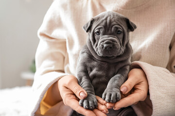 Obraz Owner with cute puppy at home - fototapety do salonu
