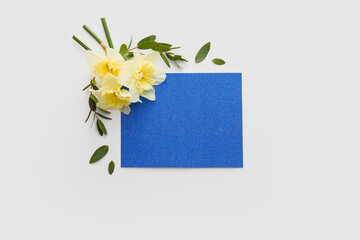 Beautiful daffodils and blank card on white background
