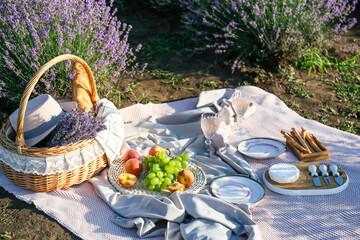 Fototapeta Wicker basket with tasty food and drink for romantic picnic in lavender field obraz