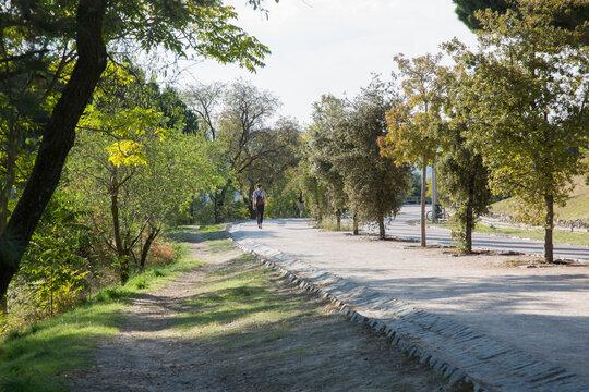 Path in Dehesa de la Villa Park; Madrid