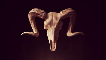 Obraz Ram Skull Anatomy Bone Horn Halloween Horror Trophy 3d illustration render - fototapety do salonu
