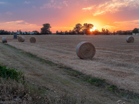 View of Hay Bales in the Countryside during Sunset in Italy