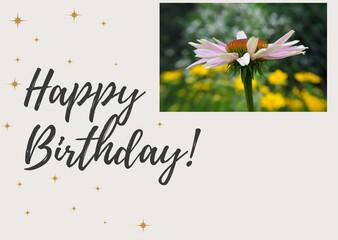 Fototapeta Happy birthday card obraz