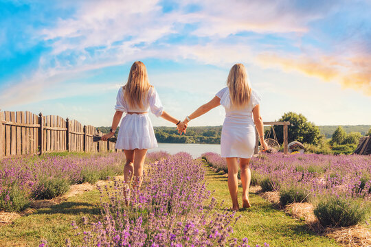 Back view portrait of two young women holding hands at lavender field, outdoors in the summer