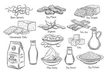 Fototapeta Soy product outline vector icons. Drawn monochrome soy sprouts, tofu skin, coagulated soy milk, soybean, tempeh, miso, flour and ets. obraz