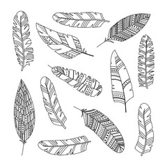 Obraz Set of vector feathers in boho style with geometric ornaments. Line art - fototapety do salonu