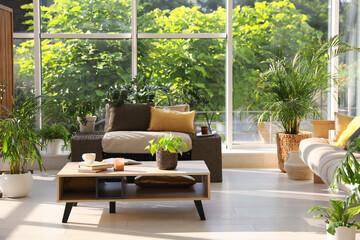 Fototapeta Indoor terrace interior with modern furniture and houseplants obraz