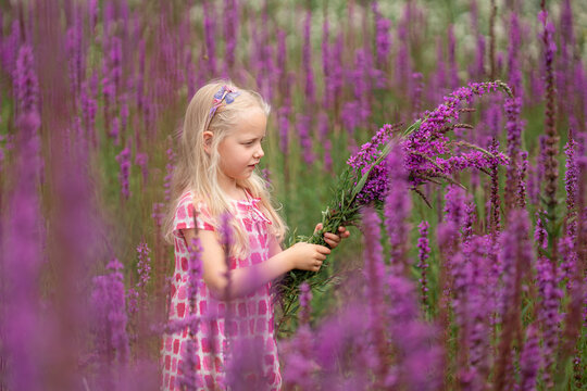 Little girl in a field with wildflowers