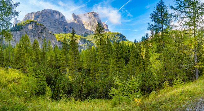 Panoramic view over magical Dolomite peaks, pine and spruce forests, valleys at blue sky and sunny day, South Tyrol, Italy.