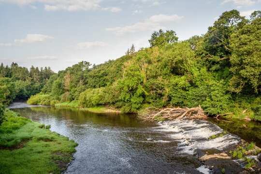 Beam Weir on the River Torridge viewed from the Tarka Trail.