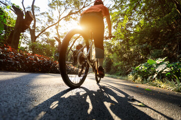 Woman cycling on bike path at park on sunny day