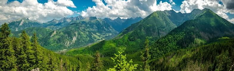 Fototapeta Gęsia Szyja - szlak z Rusinowej Polany, Tatry obraz