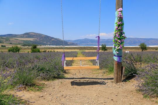 Wooden swing in lavender field near lake Salda in Burdur, Turkey